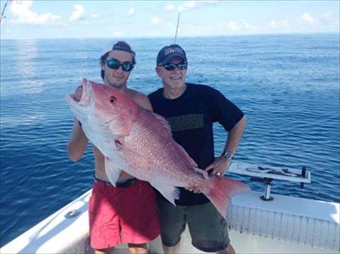 Index hunting deep sea fishing in alabama brian daniels for Alabama deep sea fishing